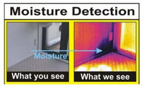thermal camera MOISTURE DETECTION